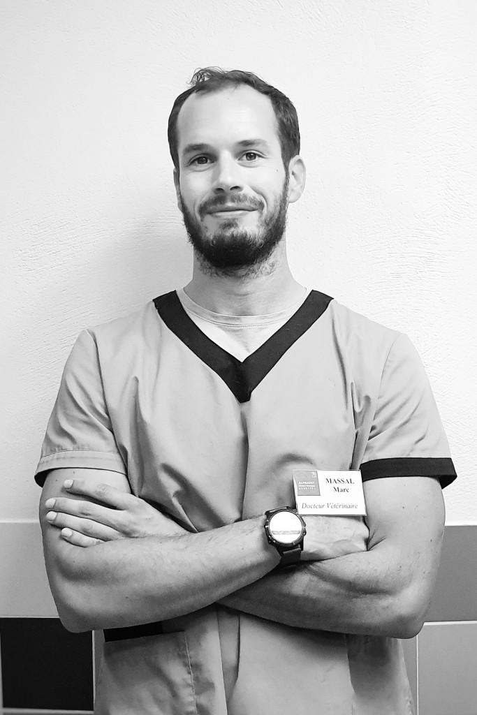 Marc MASSAL Vétérinaire ENVT 2013 CEAV de Médecine Interne Ancien chargé de consultations de médecine interne à l'ENVT Ancien Interne à l'ENVT